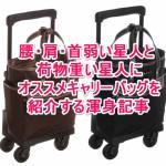 重い荷物で肩こり腰痛ヤバイ人はスワニーのキャリーバッグを使えばいいじゃない。